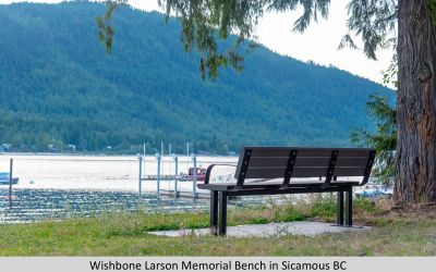 Wishbone Larson Memorial Bench in Sicamous BC