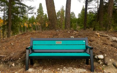 Wishbone-Rutherford-Wide-Body-Memorial-Bench-at-Agur-Lake-Near-Summerland-BC